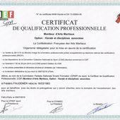 """Certificat de Qualification Professionnelle """"Moniteur d'Arts  Martiaux"""" - DEFENSES TACTIQUES"""