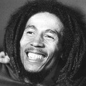 Bob Marley - 18 Citations - La vache rose