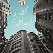 Le ciel est la limite de Anne Lanöe - Carnet de bord littéraire