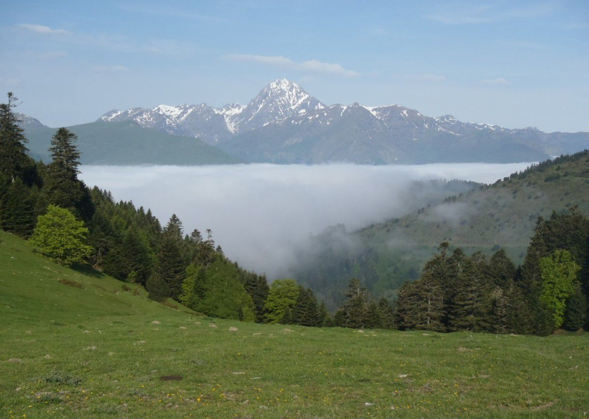 Patrimoine 65 : Pic du Midi de Bigorre