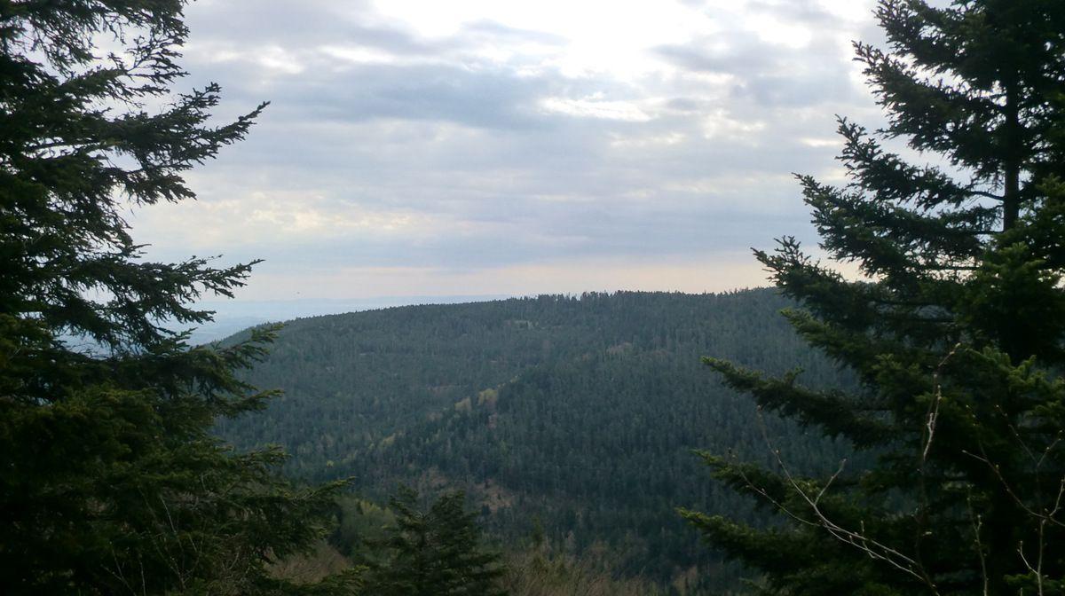 De l' impressionnant rocher du Rosskopf, surplombant la vallée de la Mossig, la vue porte sur le Massif du Schneeberg.
