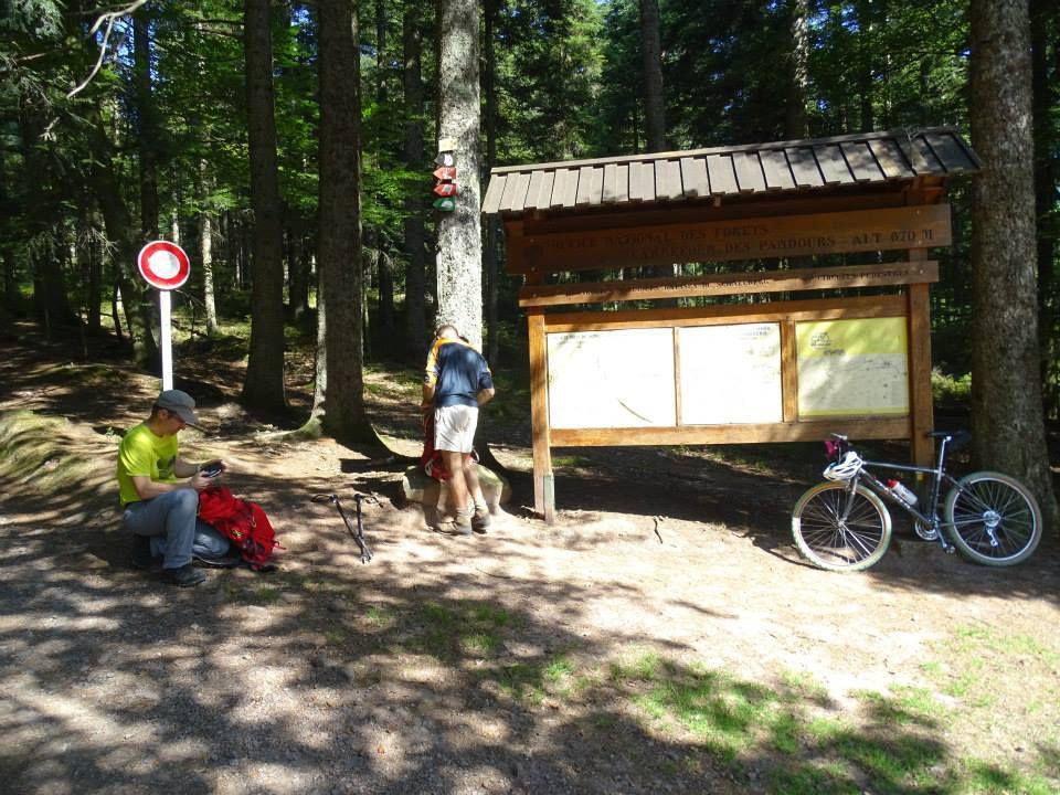 la montee au schneeberg depuis wasselonne  08  2015