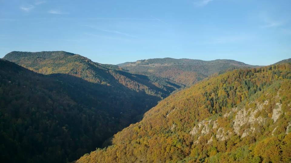 Les vallées les plus encaissées sont encore plongées dans l'obscurité. La forêt se couvre de belles couleurs automnales.