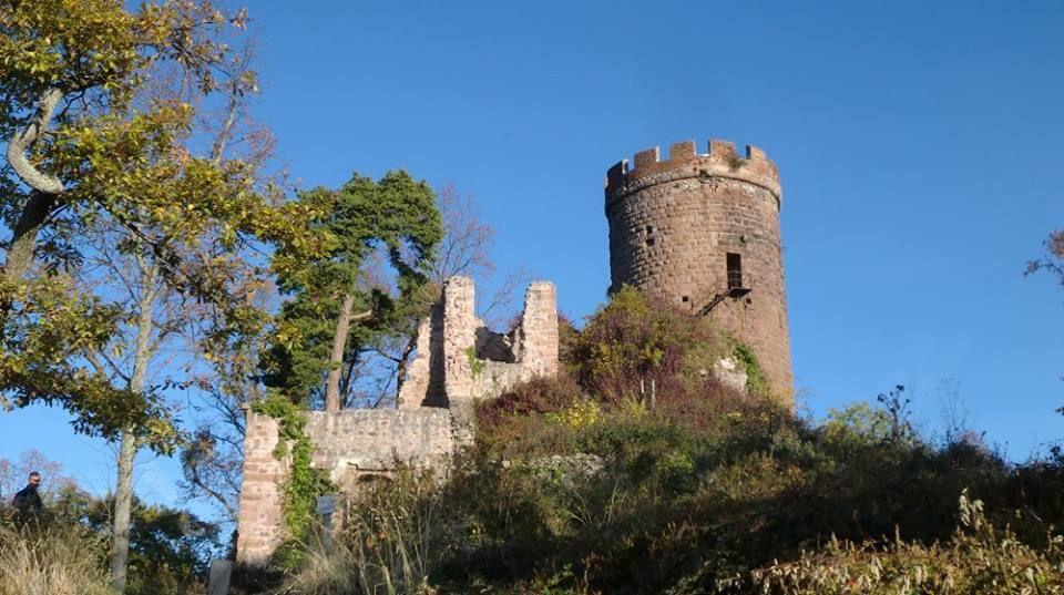 Château du Haut-Ribeaupierre (Hohrappolstein), datant du XII e siècle. Il domine les deux autres châteaux de Ribeauvillé. Sa découverte se fait cependant aux risques et périls des visiteurs.