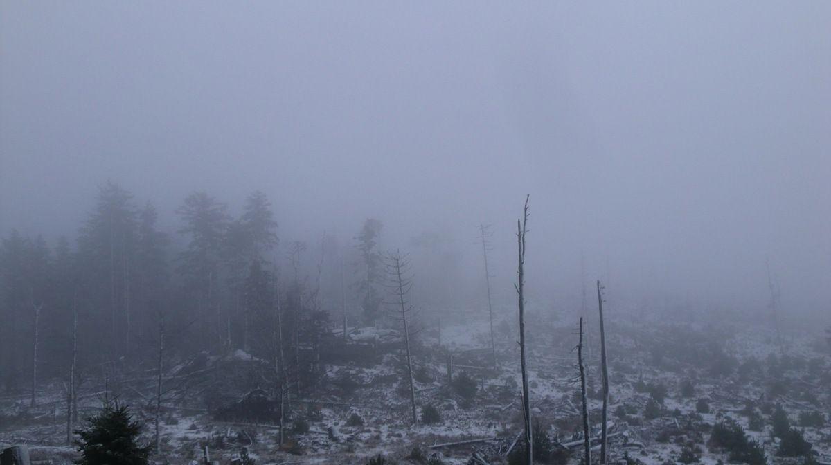 En un rien de temps, le ciel se couvre, tout devient gris, et je retrouve cette ambiance mystérieuse qui règne souvent sur cette crête.