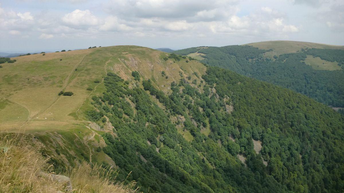 Du haut du Rothenbachkopf, vue magnifique vers le troisième Kopf, le moins élevé des trois, le Rainkopf (1305m). C'est d'ailleurs le seul de la Schlucht, jusqu'au Markstein où je pas encore mis les pieds. A droite le Kastelberg (1350m).