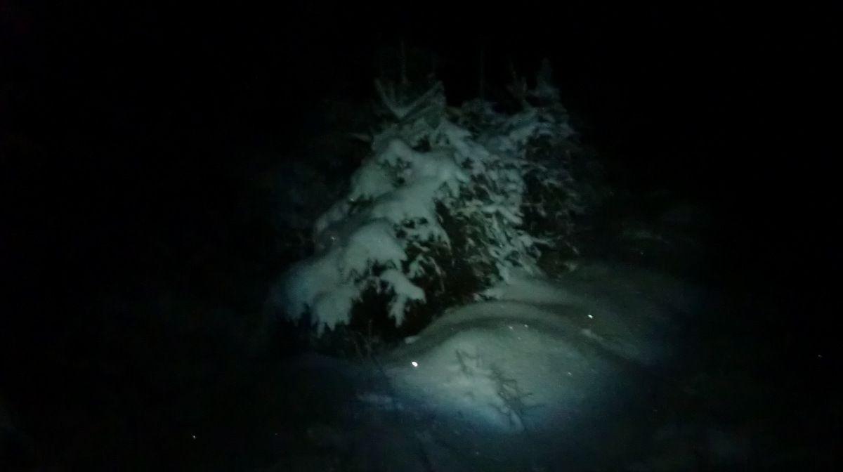 La star de cette nuit hivernale, à la lueur de la frontale.