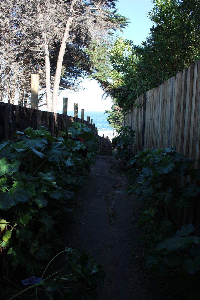 Les alentours d'Isla Negra