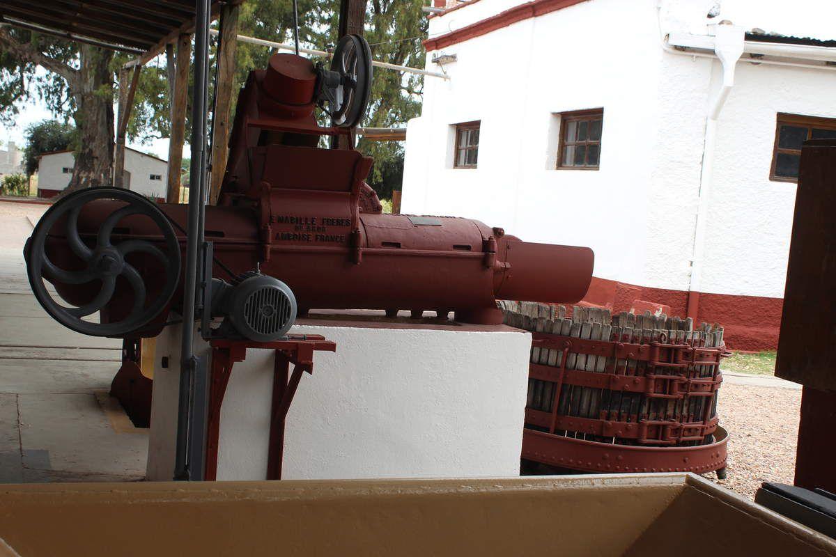 Cette Bodega ( fondée par une français nommé Rodolphe Iselin) utilise aujourd'hui encore es machines importées de France, achetées chez les frères Mabille d'Amboise! La Touraine  est représentée jusqu'en Argentine!