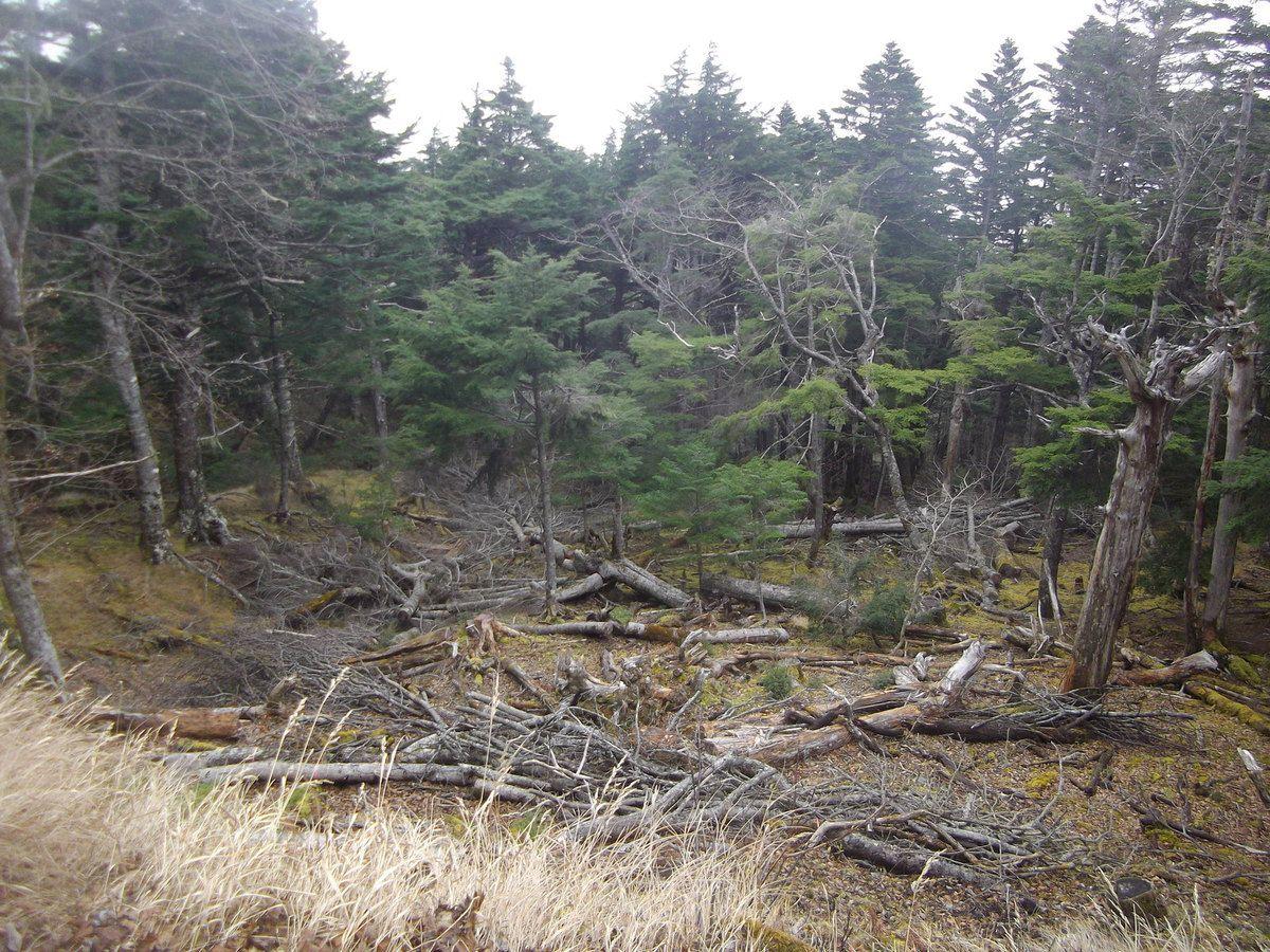 photos de la randonnée