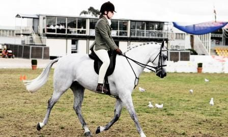 The Secrets Of Looking Good While Your Riding Your Horse
