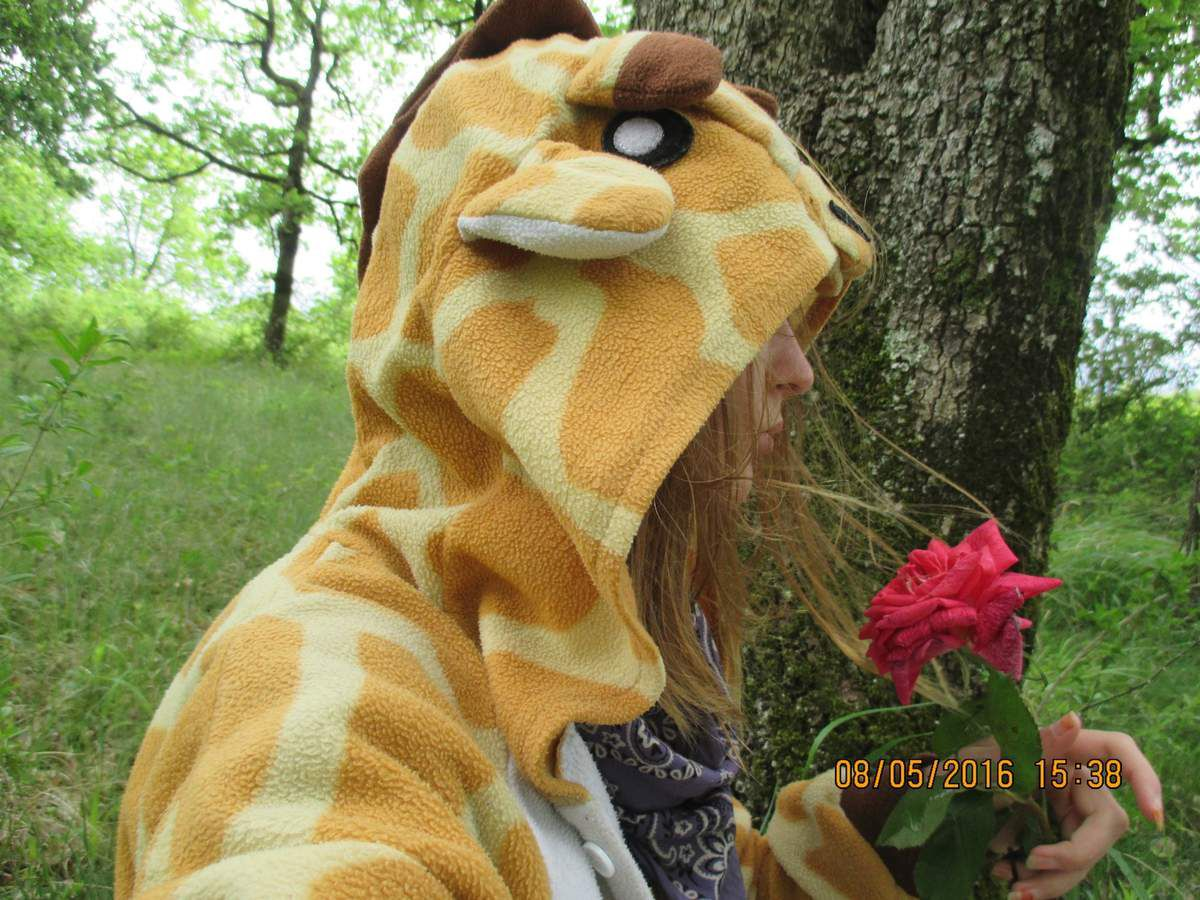 Une girafe parmi les fleurs.