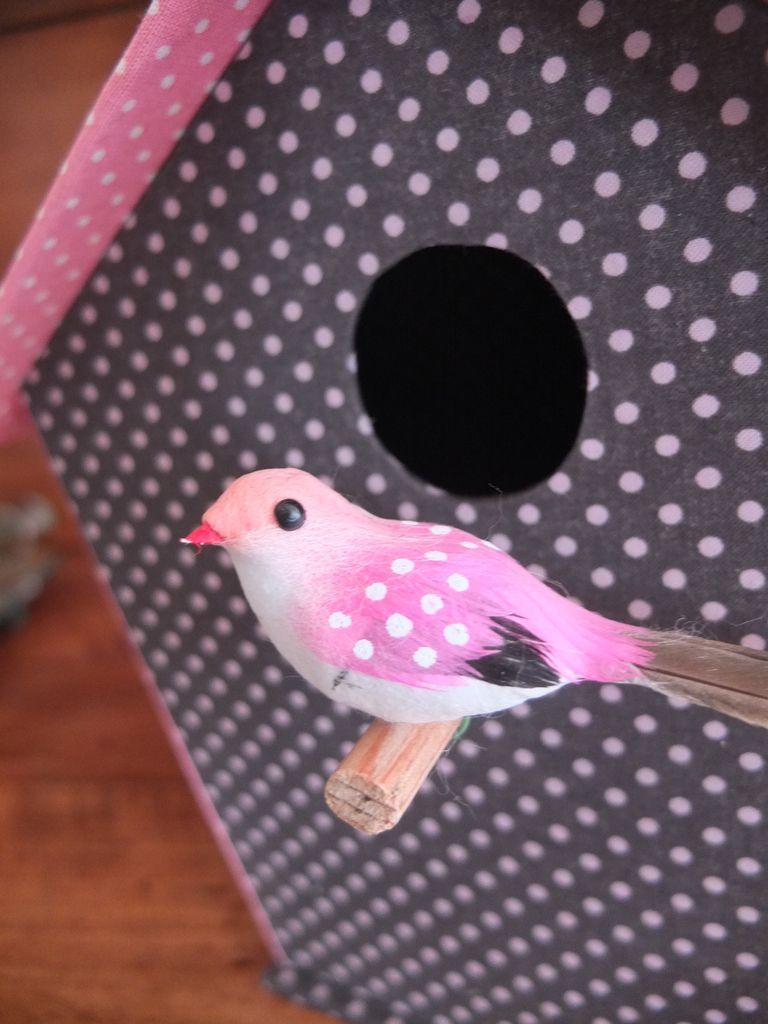 Un petit oiseau dans son nichoir