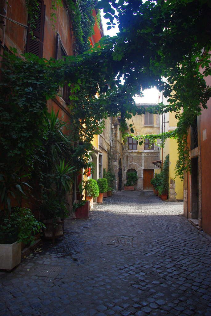 Ma préférence va aux détours dans les petites rues de Rome. Vides de touristes. Ombragées des 40 degrés d'été. Des bons cafés a moins d'un euros. Des glaces maisons aux allures bigarrées
