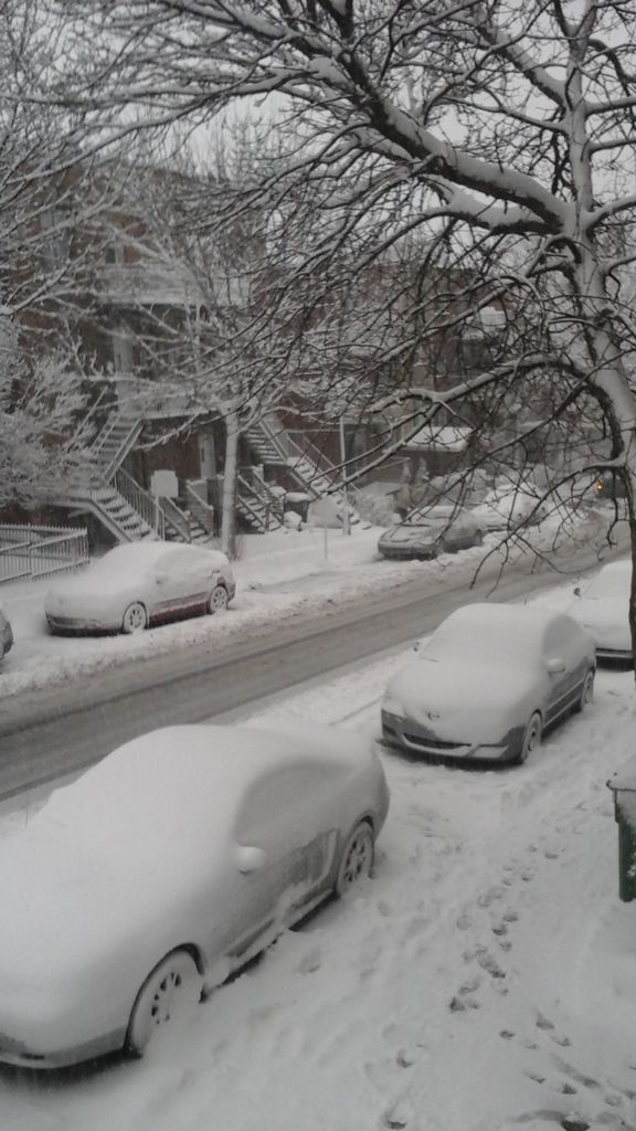 Et puis la neige. Partout. Inoubliable et dans tous ses états.