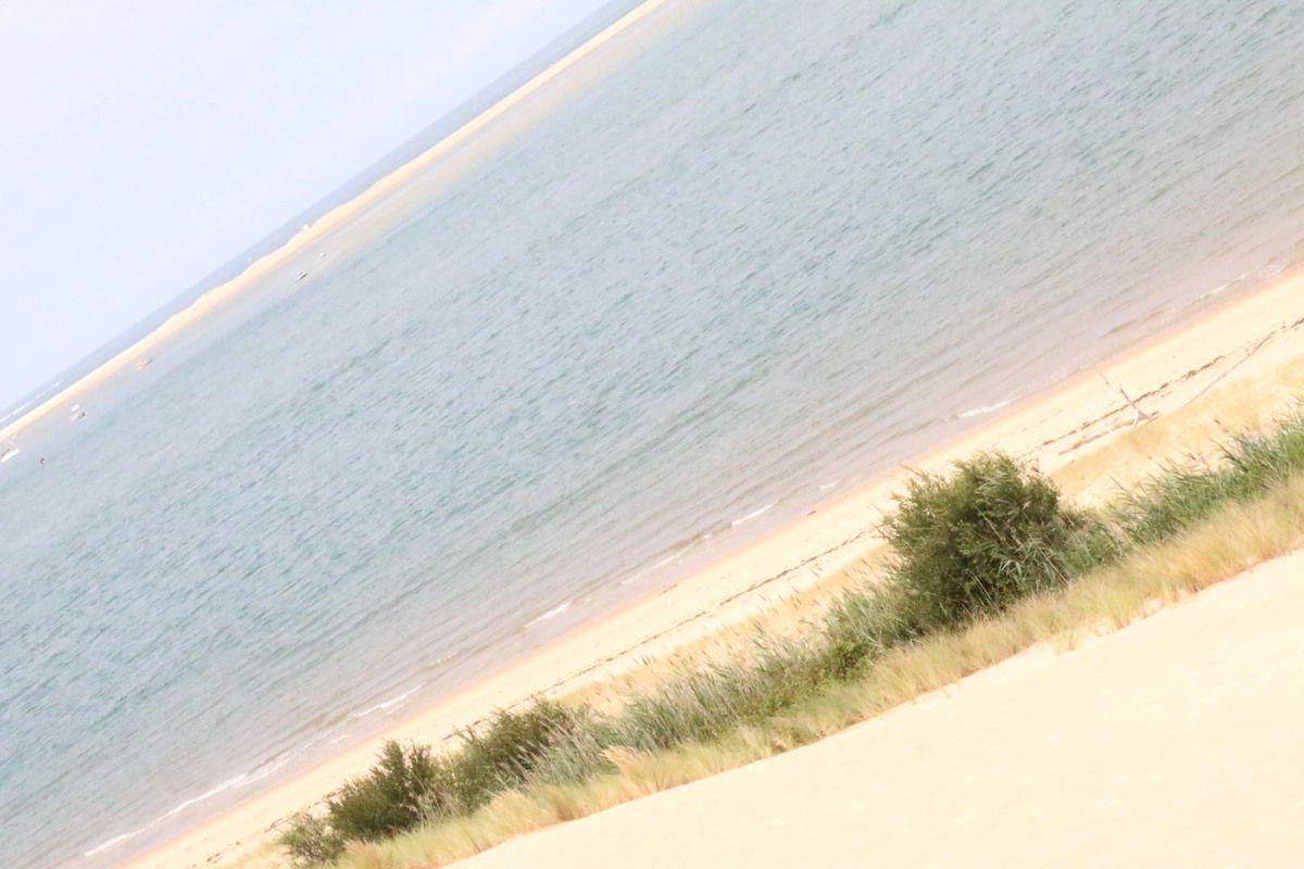 L'ascension de la dune