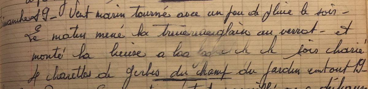 Dimanche 29 juillet 1956 : charrettes de gerbes