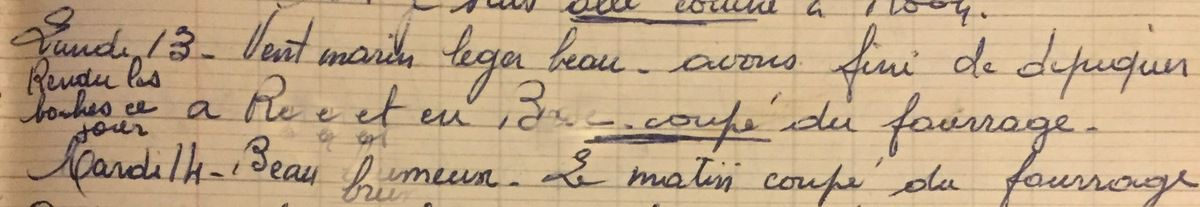 Lundi 13 août 1956 - fourrage