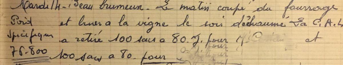 Mardi 14 août 1956 - Retour à la vigne