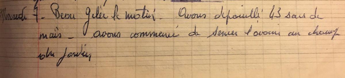 Mercredi 7 novembre 1956 - semer l'avoine