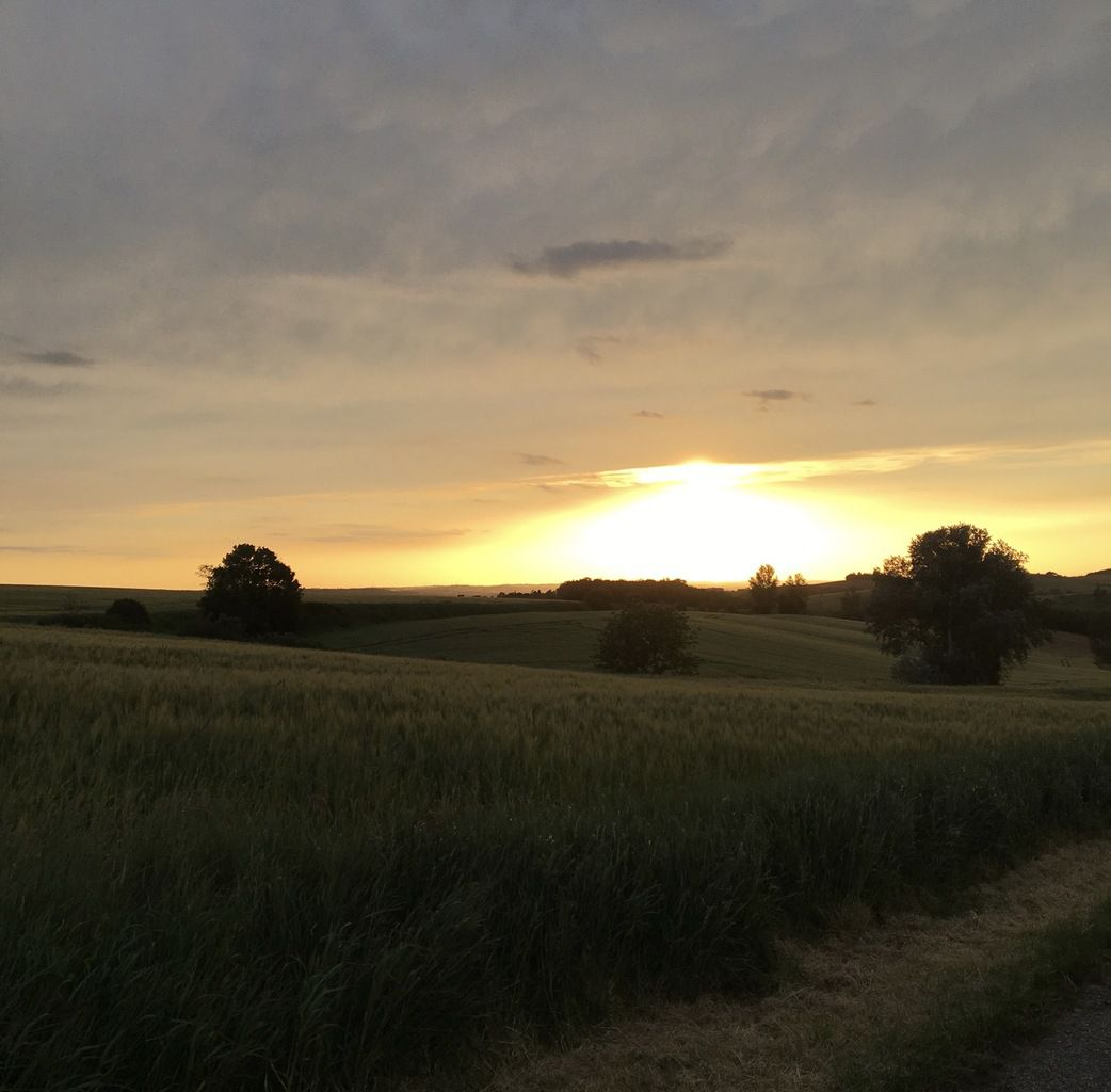 Un soir dans le Lauragais (Photo Bruno Alasset)