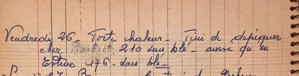 Vendredi 26 juillet 1957 - Dépiquer chez les voisins