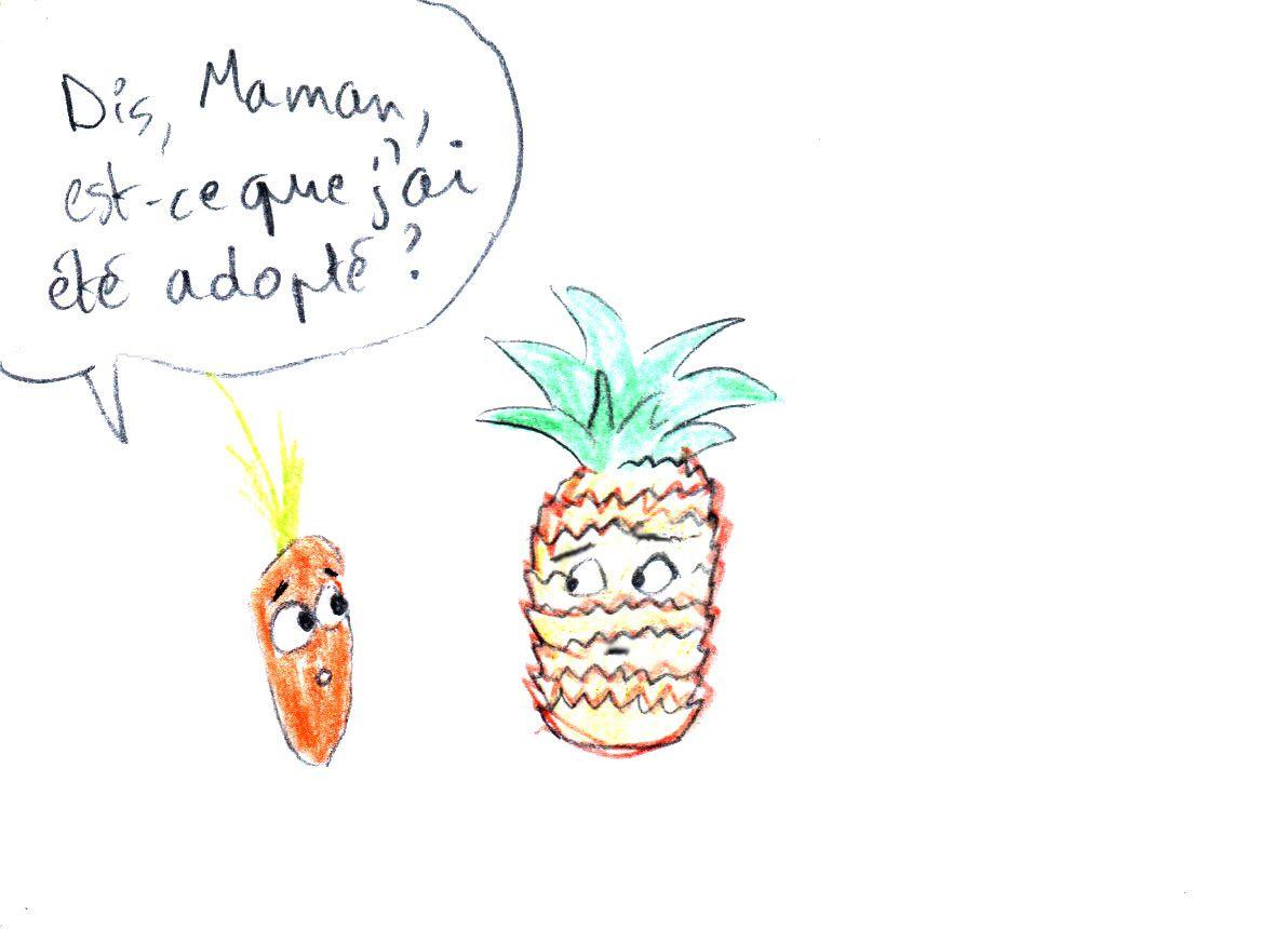 La carotte du mois: Juillet 2017