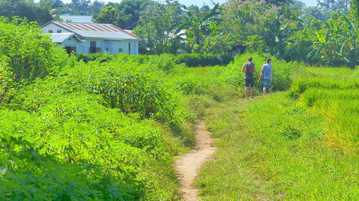Le treck dans les montagnes de Hsipaw