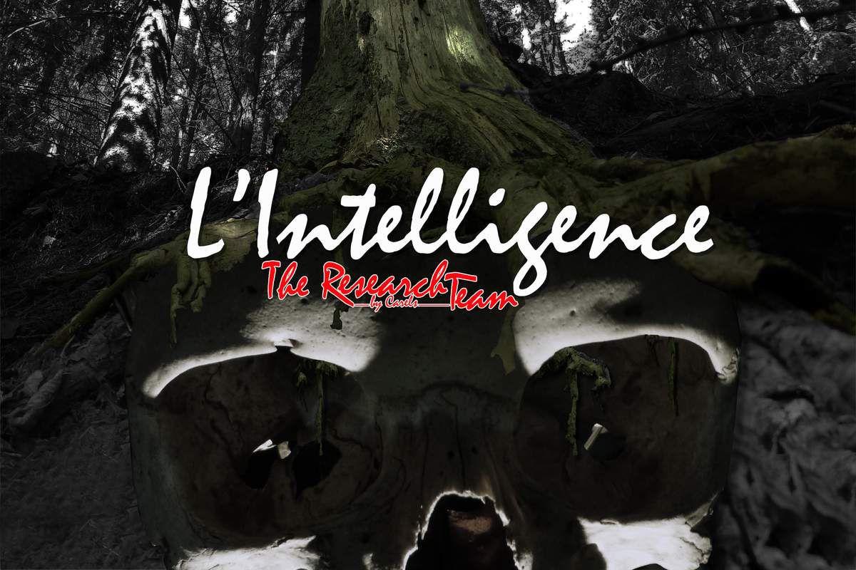 4. L'intelligence