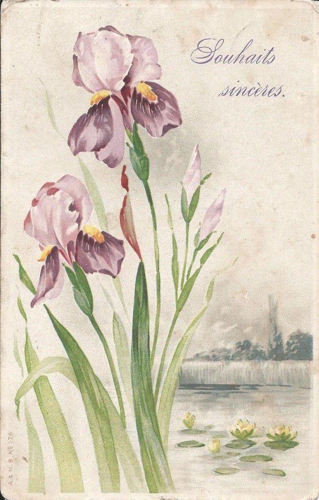 512 - SOUHAITS SINCÈRES -  postée le 30.11.1914 - dos divisé