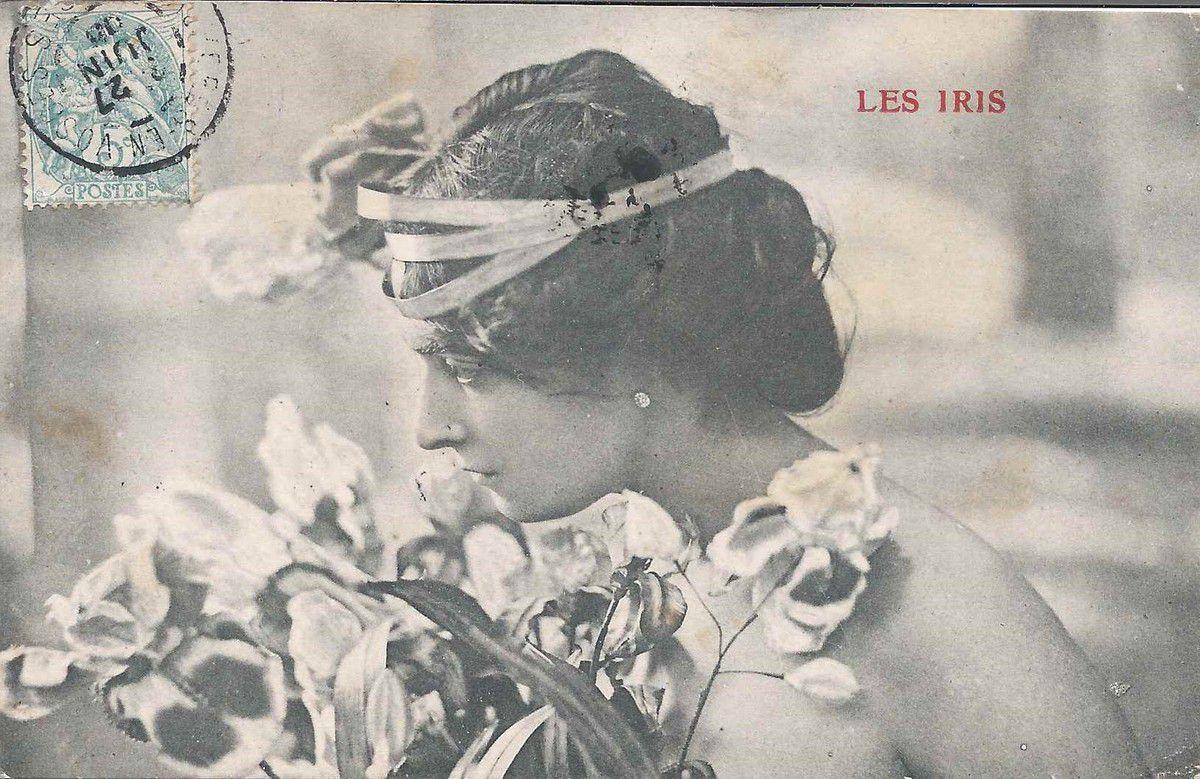 657 - les iris - 27/06/1905