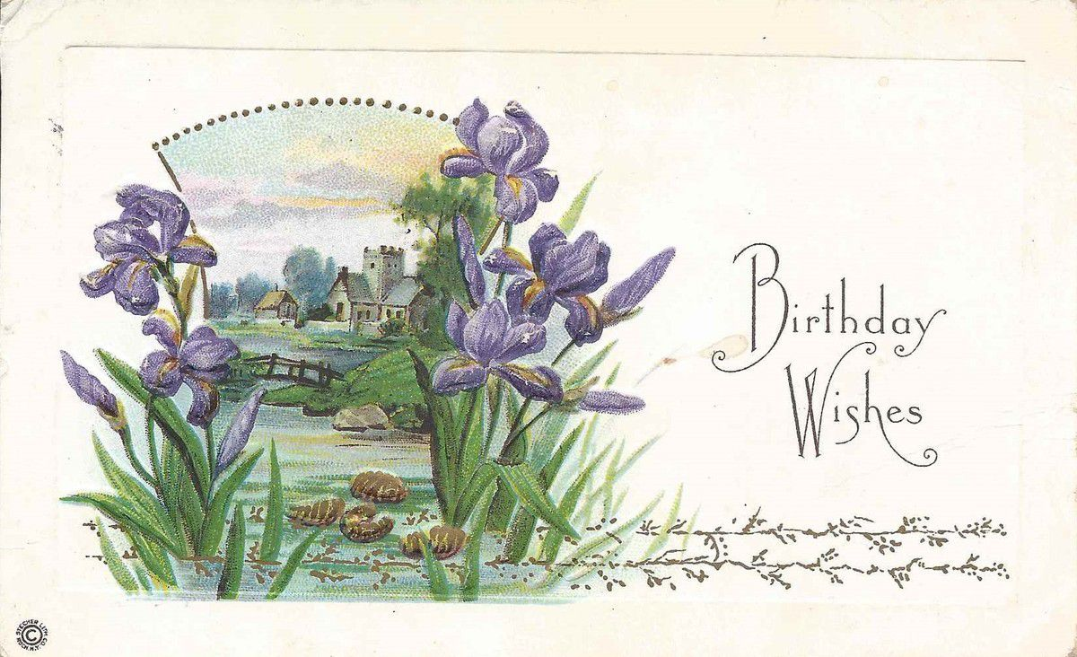 696 - carte gaufrée - BIRTHDAY WISHES - 17.01.1917