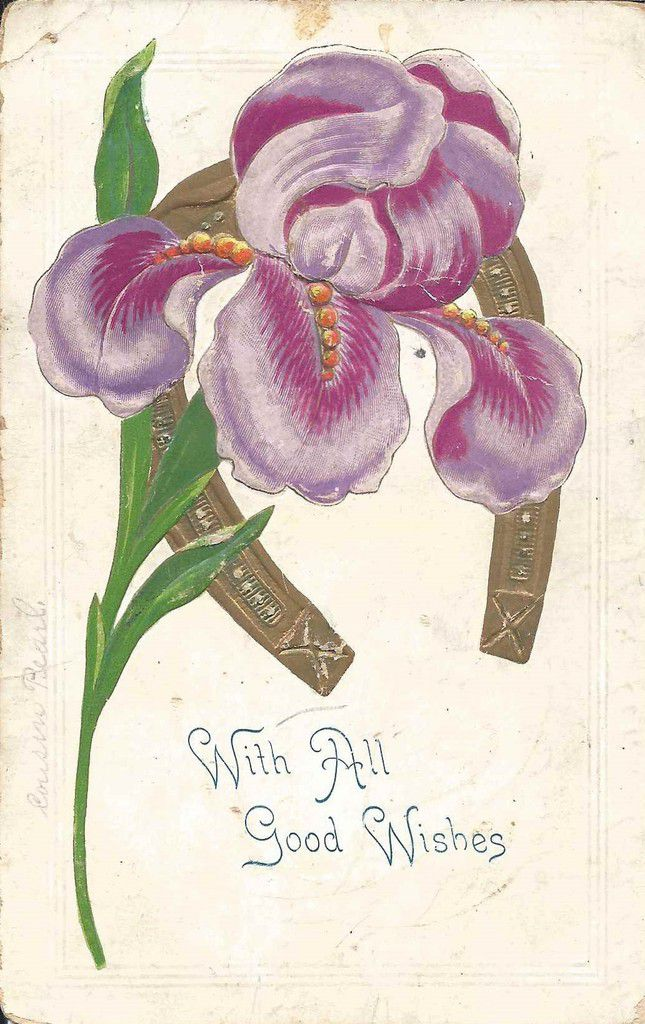 705 - with all good wishes postée en 1908