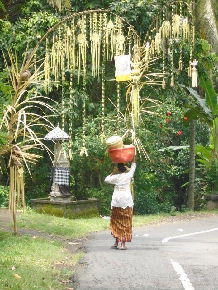 Des bambous décorés, honorant les volcans, et demandant par la même leur protection, sont réalisés par chaque famille (et plantés devant leur maison)