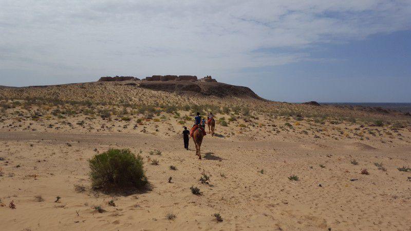 A la découverte du désert de Kysylkoum