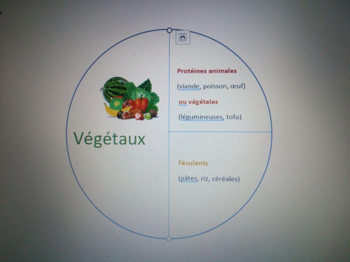 Composition de l'assiette idéale