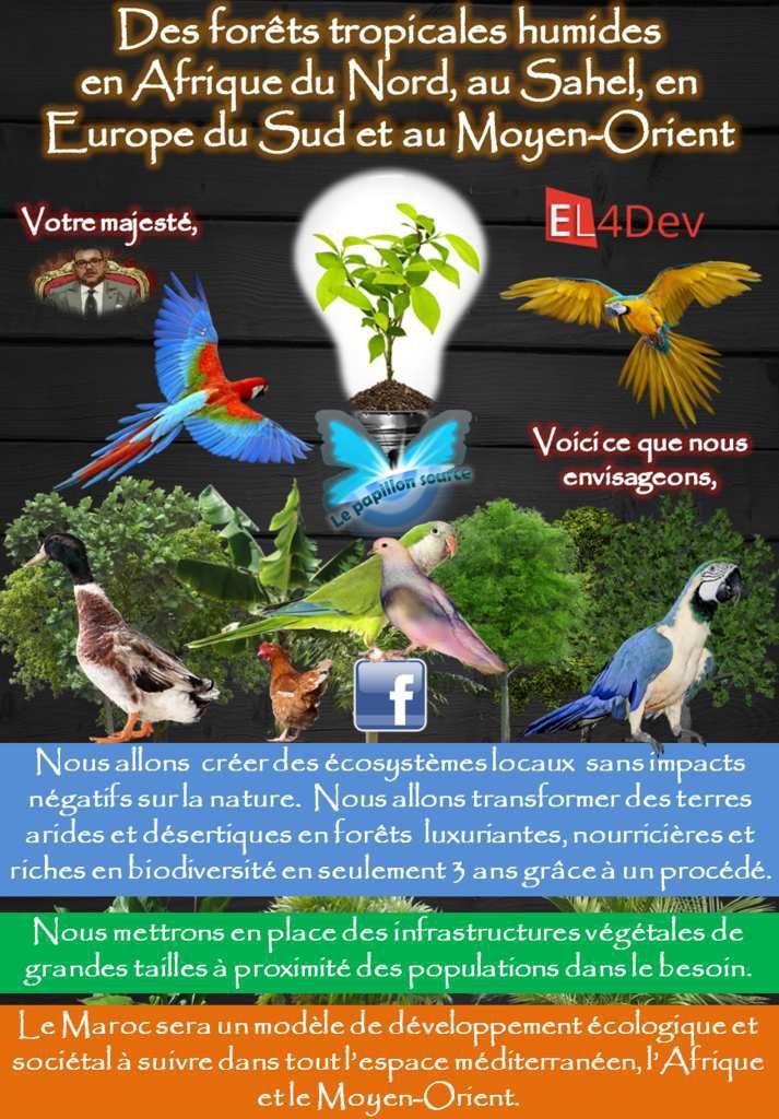 Choisir notre destin - EL4DEV Le Papillon Source