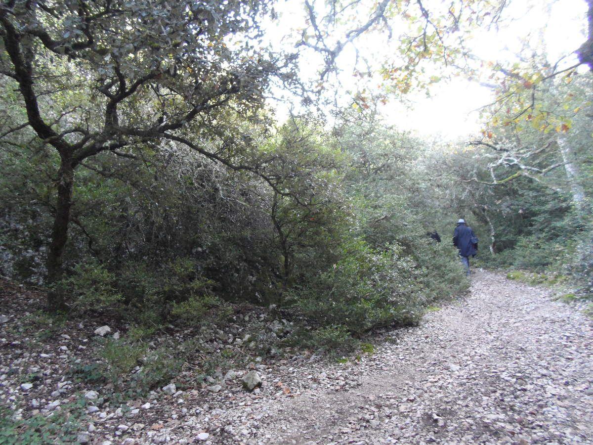 Le chemin qui mène à la source miraculeuse de St Gens.