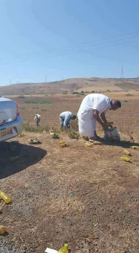 Algérie - Insolite - Accident de circulation et pillage