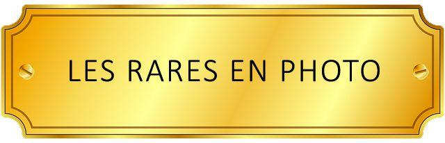5 Francs NAPOLÉON EMPEREUR, CENT-JOURS  1815 - UN MONDE DE FOUS