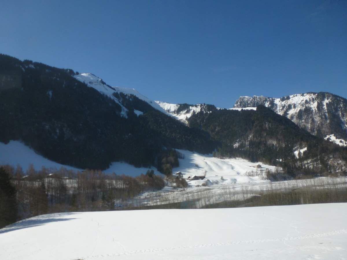 Golden Pass entre Montreux et Zweisimmen