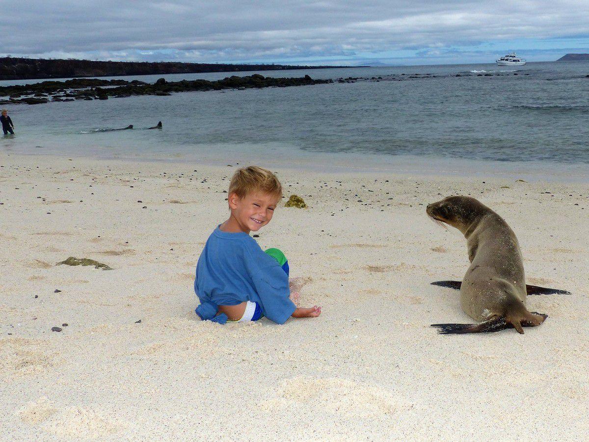 Galapagos: Isabella puis Santa Cruz, bouquet final...