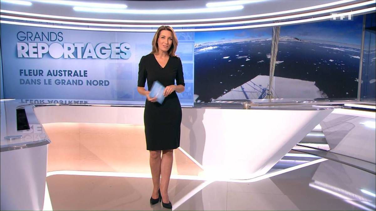 Anne-Claire Coudray JT 13H TF1 le 12.11.2016