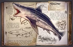 voici des mégalodon adulte de plus de 30 matres de long