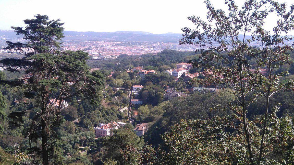 Parc de Sintra proche de Lisbonne avec ses moyens de locomotions plus ou moins caucasses