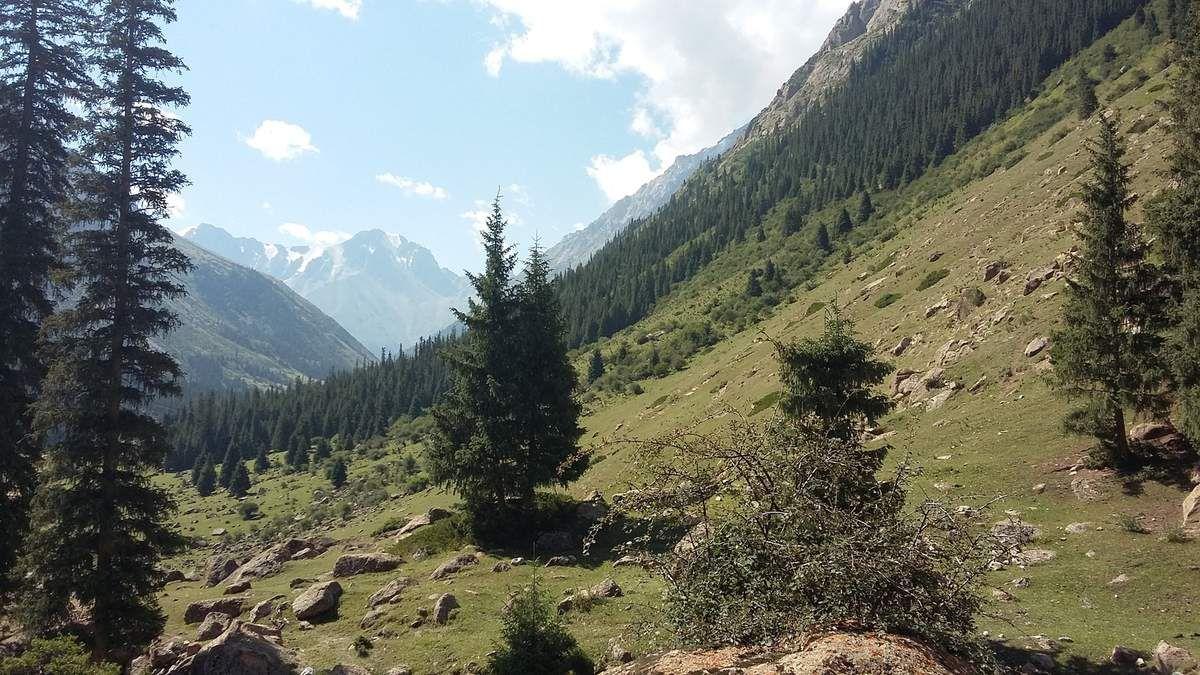 Splendide nature Kirghize