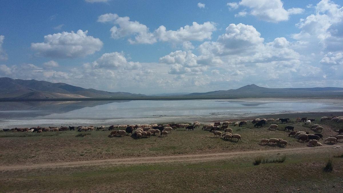 Mongolie : « Land of blue sky » et gros changement d'itinéraire !