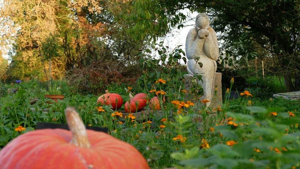 Le jardin... poétique... un peu