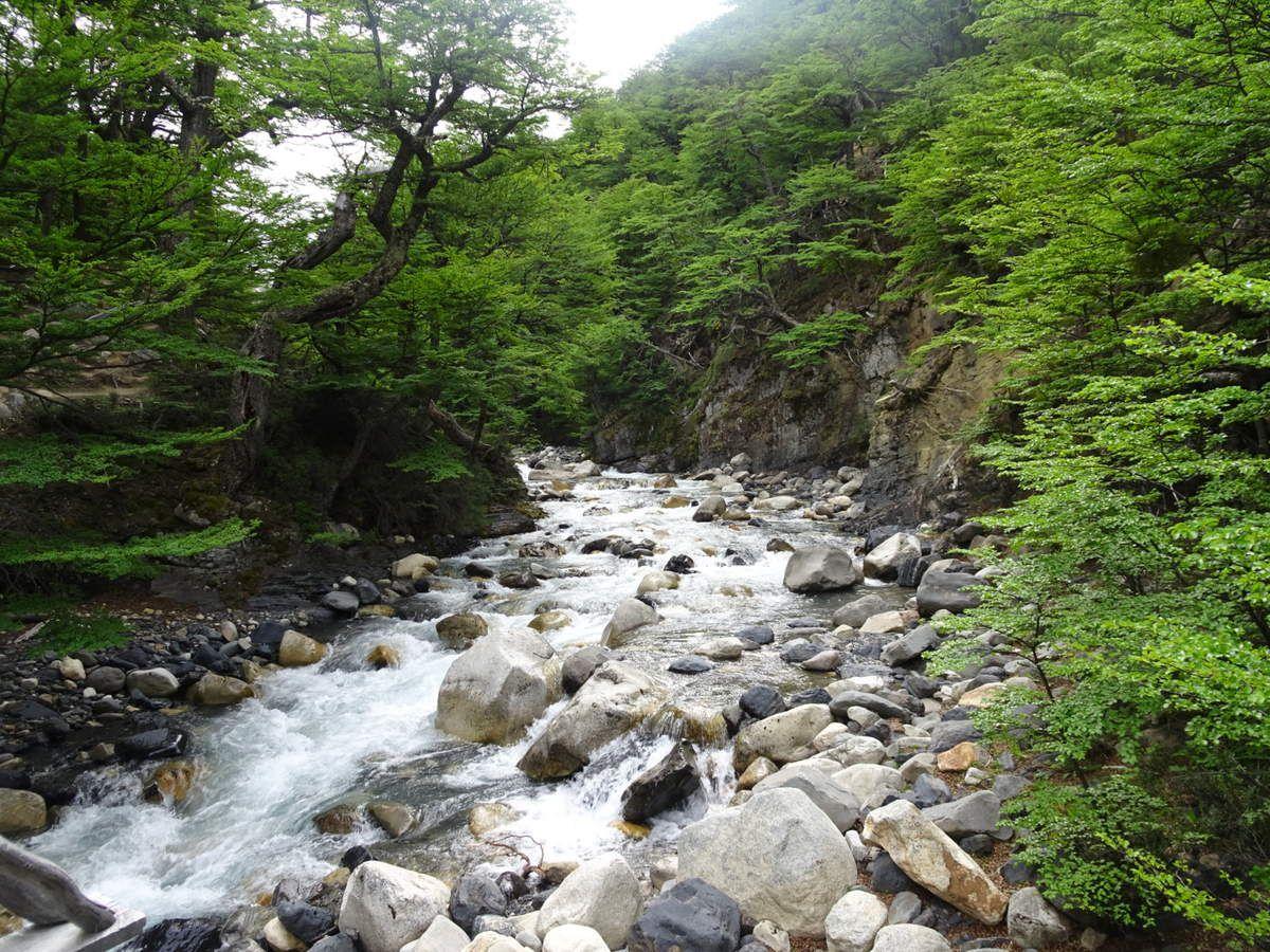 Río Ascencio en provenance directe (entre autre) du glacier sous les Torres