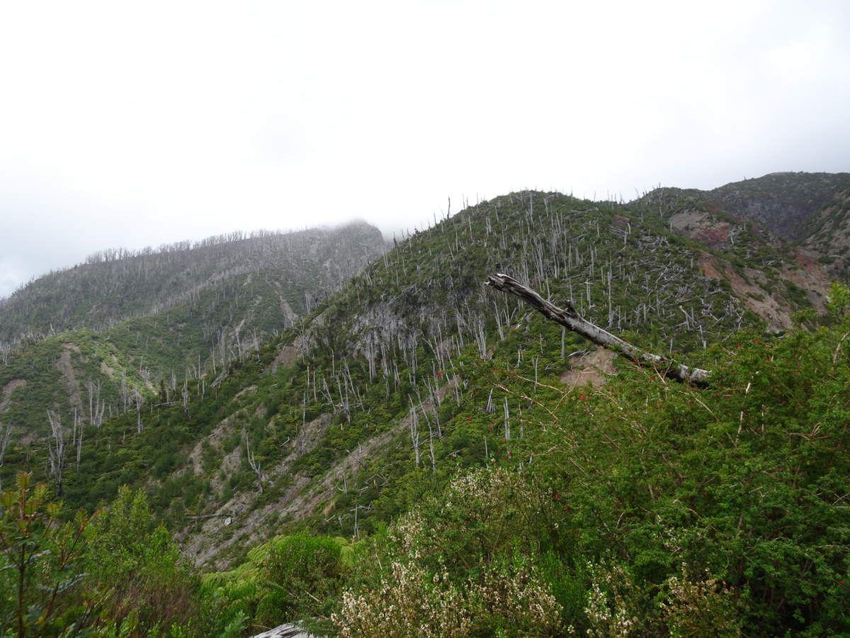 Paysages marqués par l'éruption de 2008. La pluie et les nuages augmentent l'intensité apocalyptique.